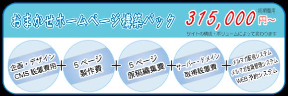 おまかせホームページ構築パック 初期費用 315,000円~